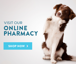Shop Vet Pharmacy